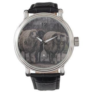 ヒツジの素朴な田舎道牧場農場の群れ 腕時計
