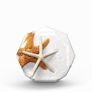 ヒトデのアクリルの八角形賞 表彰盾