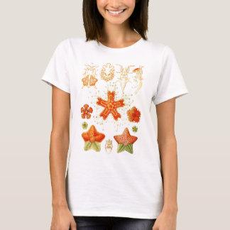 ヒトデ(Asteroidea)のヴィンテージの博物学者のイメージ Tシャツ