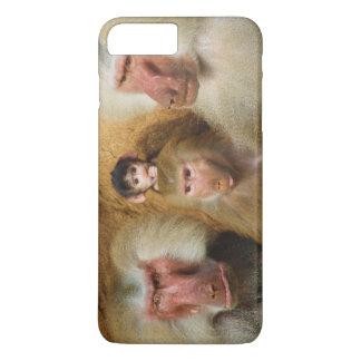ヒヒのPapioのHamadryasケルンの動物園の系列 iPhone 8 Plus/7 Plusケース