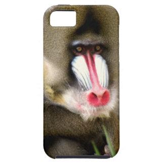 ヒヒ iPhone SE/5/5s ケース