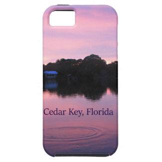 ヒマラヤスギの主フロリダの日没 iPhone SE/5/5s ケース