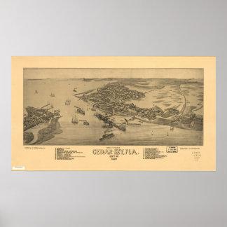 ヒマラヤスギの主フロリダ1884の旧式なパノラマ式の地図 プリント