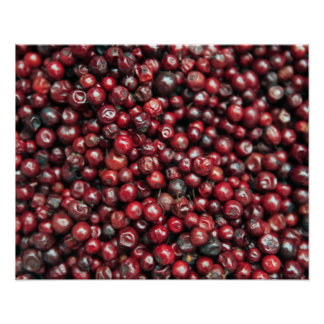 ヒマラヤ山脈の赤い果実 ポスター