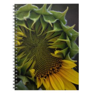 ヒマワリのノート ノートブック