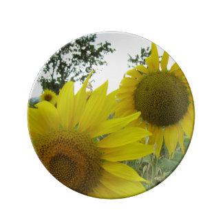 ヒマワリの写真の装飾的な磁器皿 磁器プレート