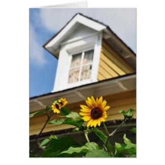 ヒマワリの家の黄色によっては夏が開花します カード