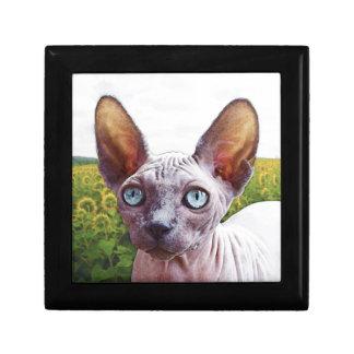 ヒマワリの猫 ギフトボックス