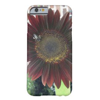 ヒマワリの蜂1 BARELY THERE iPhone 6 ケース