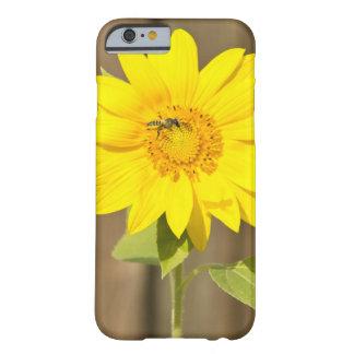 ヒマワリの蜂 BARELY THERE iPhone 6 ケース