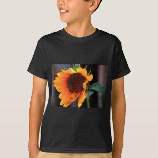 ヒマワリの開花 Tシャツ