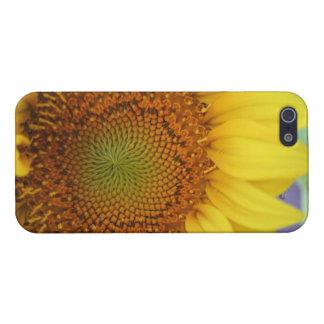 ヒマワリのiPhone 5の光沢のある終わりの場合 iPhone 5 カバー
