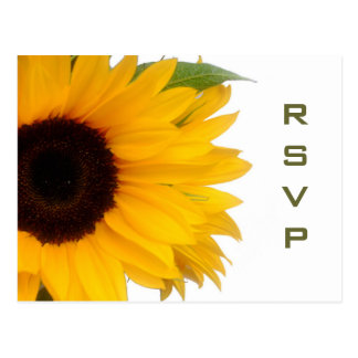 ヒマワリRSVPの郵便はがき ポストカード