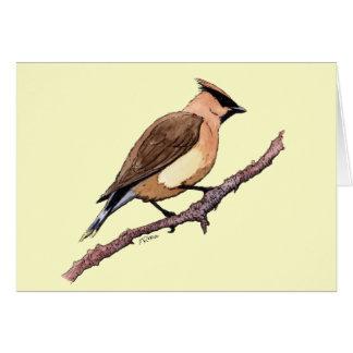 ヒメレンジャクの鳥 カード