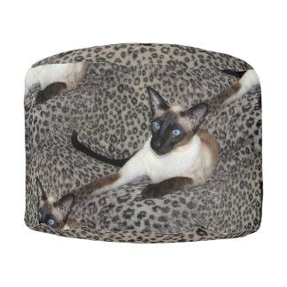 ヒョウのプリントの野生動物の点のシャム猫 プーフ