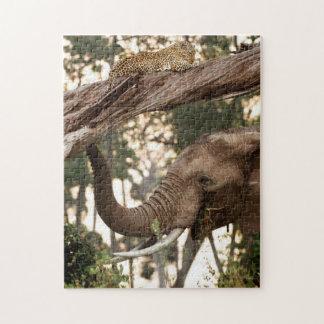 ヒョウの象(Loxodonta)のテストのにおい ジグソーパズル