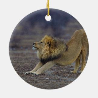 ヒョウ属のレオのヨガを伸ばしているオスのライオン セラミックオーナメント
