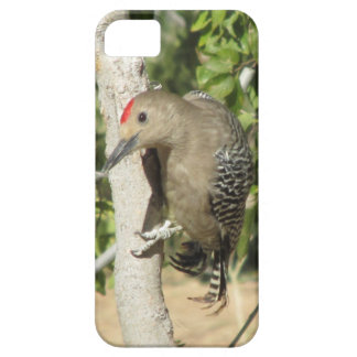 ヒラのキツツキのiPhone 5の場合 iPhone 5 Case-Mate ケース
