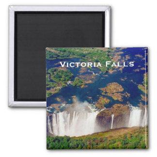 ビクトリアアンテナの滝 マグネット