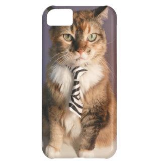 ビジネスタイの国内猫 iPhone5Cケース