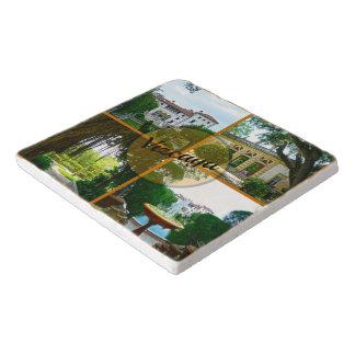 ビスカヤ博物館および植物園マイアミフロリダ トリベット