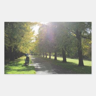 ビュート公園-秋の木 長方形シール