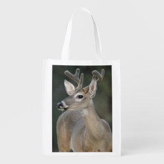 ビロードの素晴らしい(雄ジカの)枝角のオジロ鹿シカの木びき台は飲みます エコバッグ