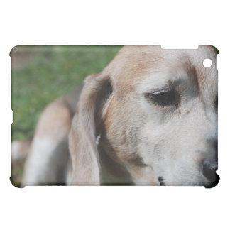 ビーグル犬のポートレート iPad MINIケース
