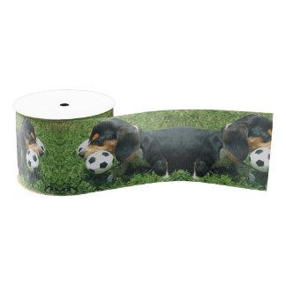 ビーグル犬の子犬のサッカーの選手のリボンを見直し グログランリボン