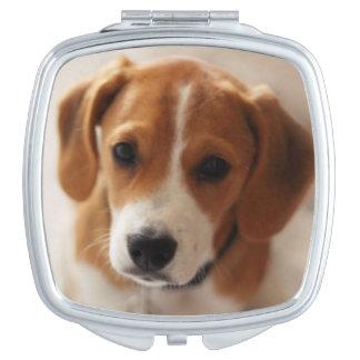 ビーグル犬の子犬2