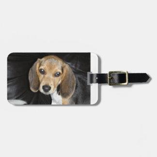 ビーグル犬の子犬2.png ラゲッジタグ