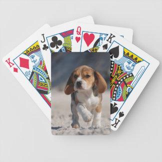 ビーグル犬の子犬 バイスクルトランプ