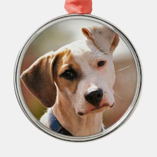 ビーグル犬の子犬 メタルオーナメント