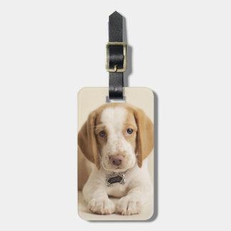 ビーグル犬の子犬 ラゲッジタグ