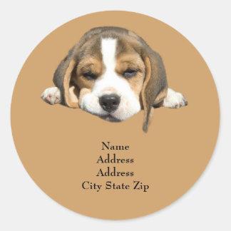 ビーグル犬の宛名ラベル ラウンドシール