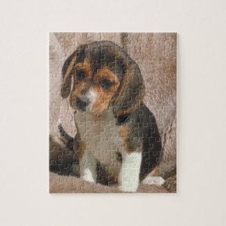 ビーグル犬の小犬のパズル ジグソーパズル