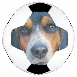 ビーグル犬の相棒 サッカーボール