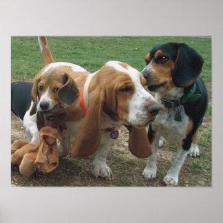 ビーグル犬及びバセットハウンドの友人 ポスター