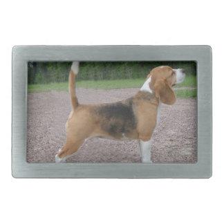 ビーグル犬完全な2.png 長方形ベルトバックル
