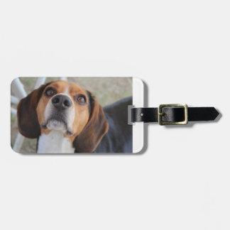 ビーグル犬2.png ラゲッジタグ
