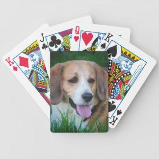 ビーグル犬 バイスクルトランプ