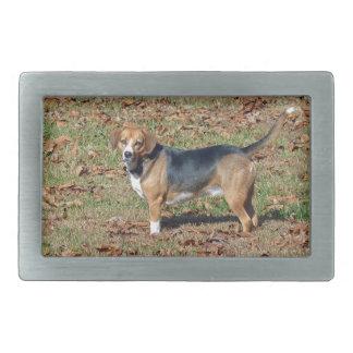 ビーグル犬 長方形ベルトバックル