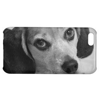 ビーグル犬 iPhone5Cカバー