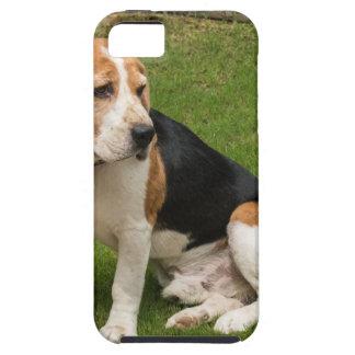 ビーグル犬 iPhone SE/5/5s ケース