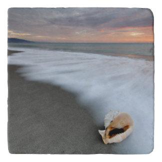 ビーチおよび貝の日の出 トリベット