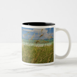 ビーチによって育つ海のオートムギUniolaのpaniculata) ツートーンマグカップ