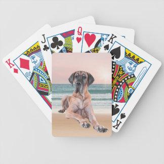 ビーチに坐っているカスタムでかわいいグレートデーン犬 バイスクルトランプ