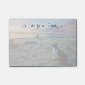 ビーチに坐っている猫 ポストイット