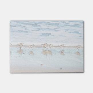 ビーチに沿って走っているシギ ポストイット