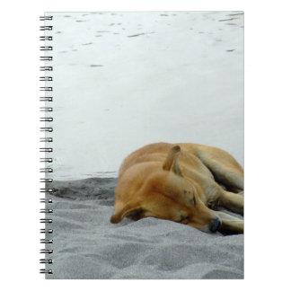 ビーチのノートの睡眠犬 ノートブック